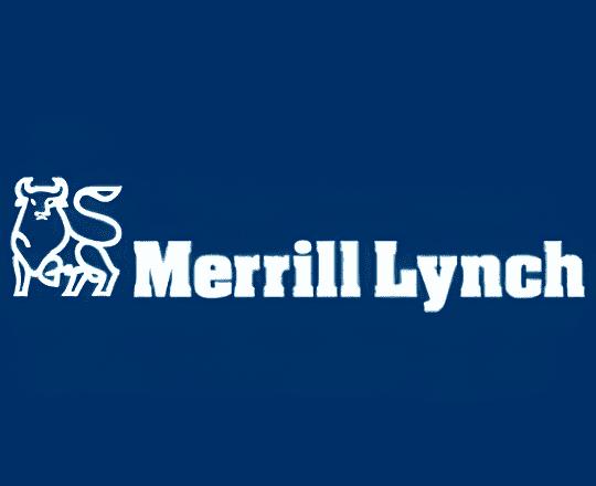 Merrill Lynch Yatırım Bank